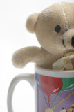 small teddy bear in a coffee cup poster