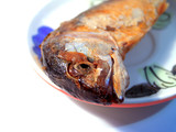 fish food poster