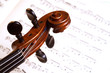 violin head