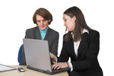 business female partners with laptop poster
