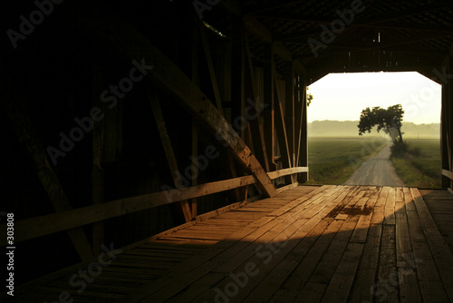 poster of through a covered bridge