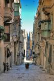 long view of maltese street - 304667