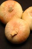 vidalia onions 4 poster