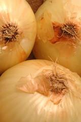 vidalia onions 1