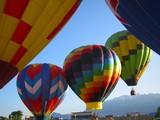 hot air balloons 5 poster