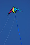 kite flying high
