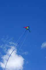 kite in air