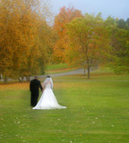 bride and groom with fall colors poster