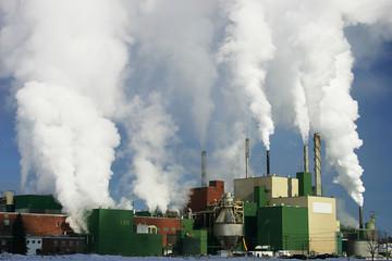 paper mill 2