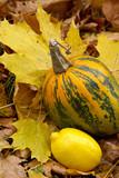 lemon and pumpkin-yellow still-life poster
