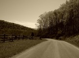 country road - 332062