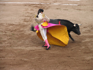 woman fighting bull