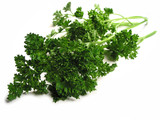 fresh parsley on white background poster