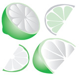 vector green lime wedge variations poster