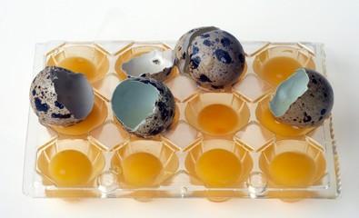 huevos5846
