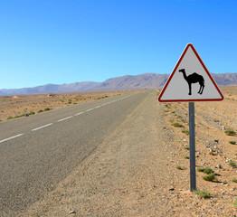 passage de chameaux