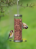 goldfinches feeding poster