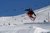 ski free style poster