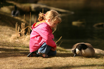 little girl and goose resting