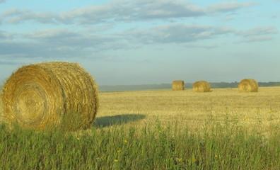 bushels of hay