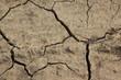 desert dirt ground
