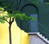 stairs and a tree by the wall poster
