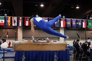 gymnast competing on pommel