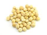 macadamia nut poster