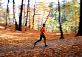 jogger on forest path in fall