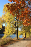 walk by the river with fall colours poster