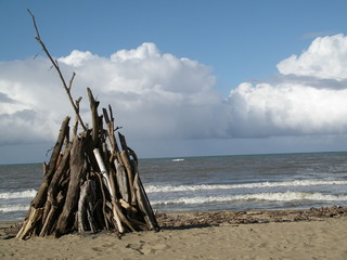 wood for a bone fire on the beach