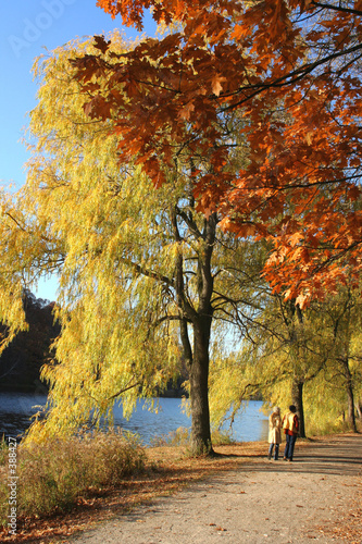 poster of walk by the river with fall colours