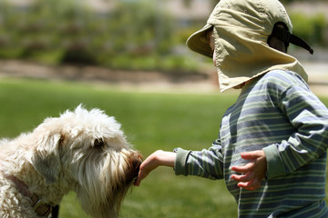 boy feeding his dog in a park