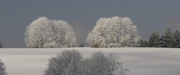 l'hiver au jura
