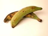 bananes plantain poster