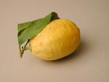 citron de nice poster