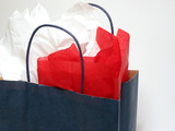 paper shopping bag with tissue poster