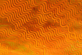 paste paper: orange lines poster
