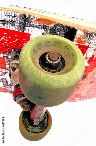 skateboard - 443289