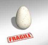 fragile egg poster