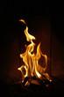 flames #28