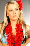 hawaii girl poster