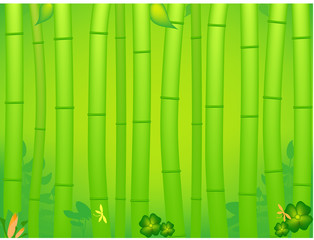 tropical bamboo background