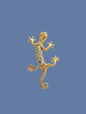 golden lizard with brilliants poster