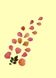 faded rose petals poster