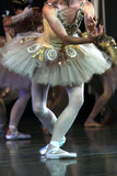 soft ballet poster