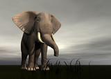 rendered elephant poster