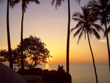 sunset under the coconut trees poster