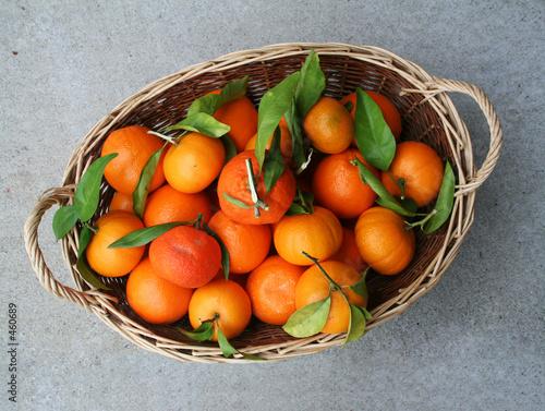 poster of basket full of oranges