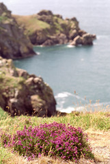 kanalinseln küstenpanorama auf jersey